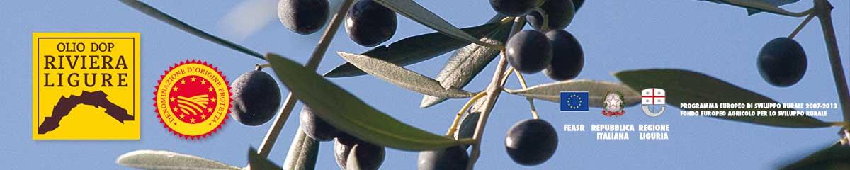 home_olives2.jpg