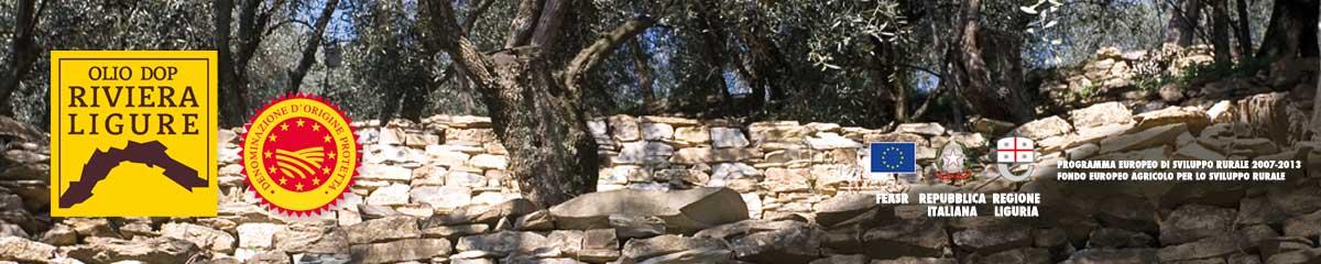 home_walls.jpg